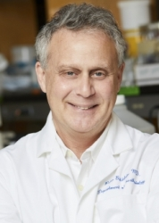 Dr. Peter Goldstein
