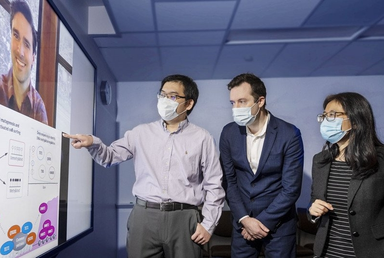 Researchers Gary Dixon (on Zoom), Heng Pan, Olivier Elemento, and Danwei Huangfu collaborated on research related to DNA methylation and gene regulation.