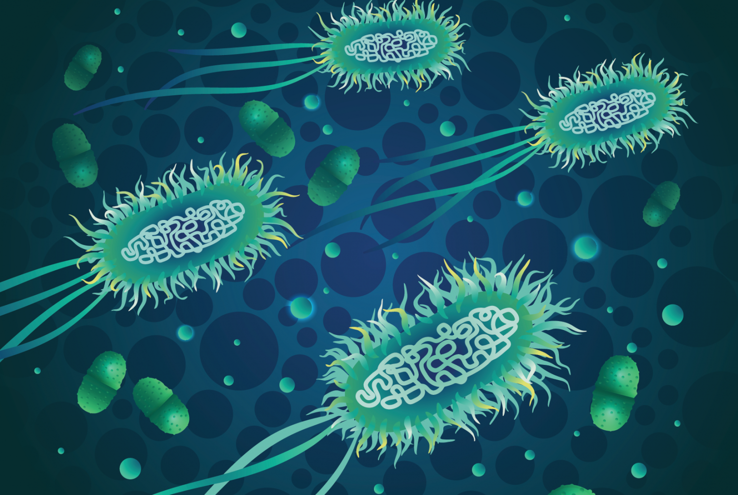 Blue and green illustration of e coli bacterium