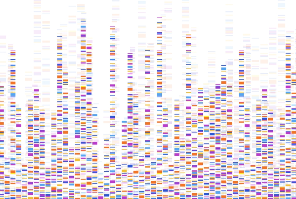 Genome map