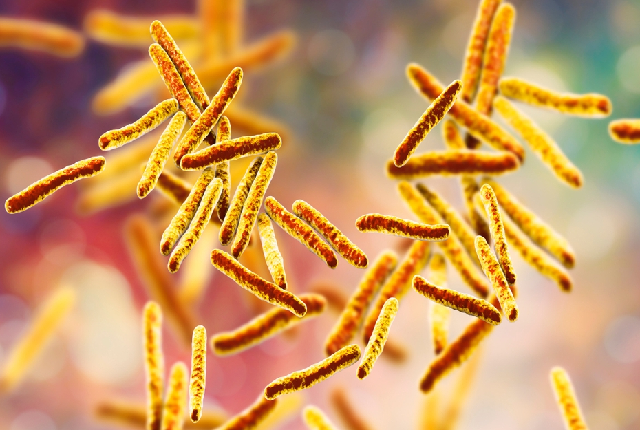 Bacteria Mycobacterium tuberculosis, the causative agent of tuberculosis, 3D illustration - Illustration