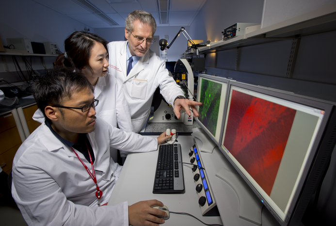 Weill Cornell Medicine's research enterprise has expanded in recent years. Credit: John Abbott.