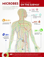 Infographic: DNA found in New York subway form human body bacteria