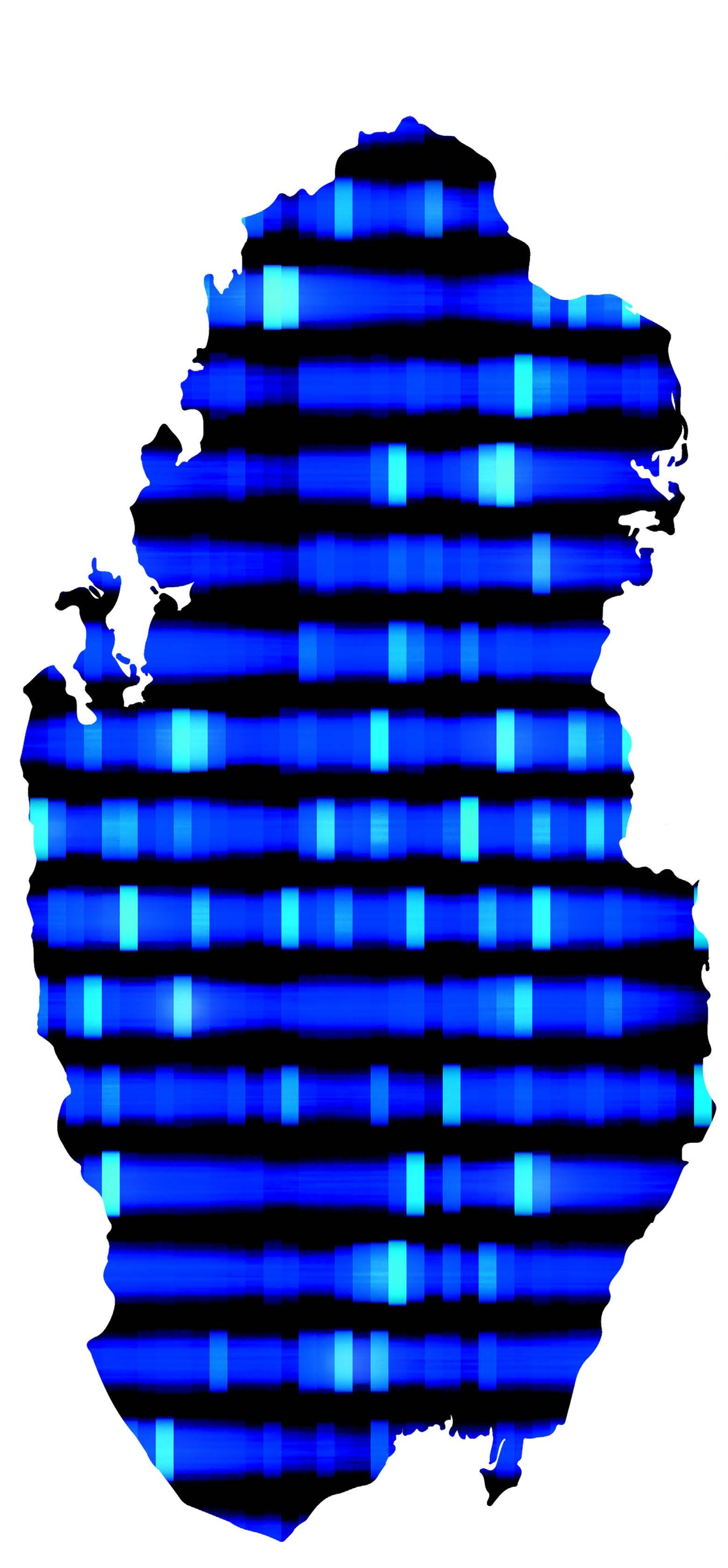 an illustration of DNA in the shape of Qatar.