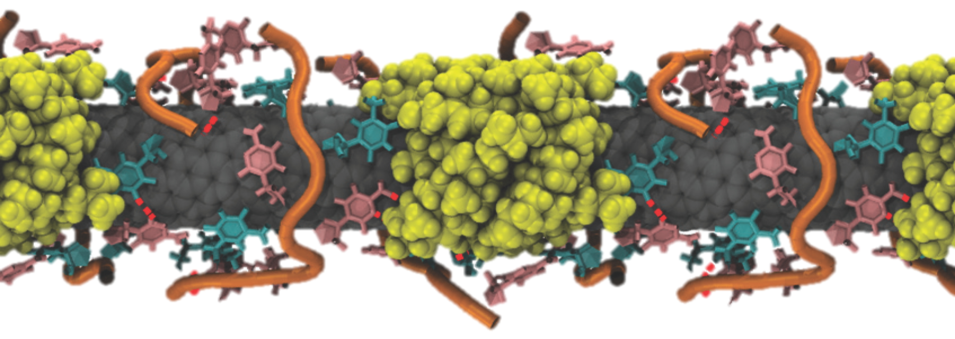 Simulated image of the nanoreporter bound to molecules of cholesterol (yellow).
