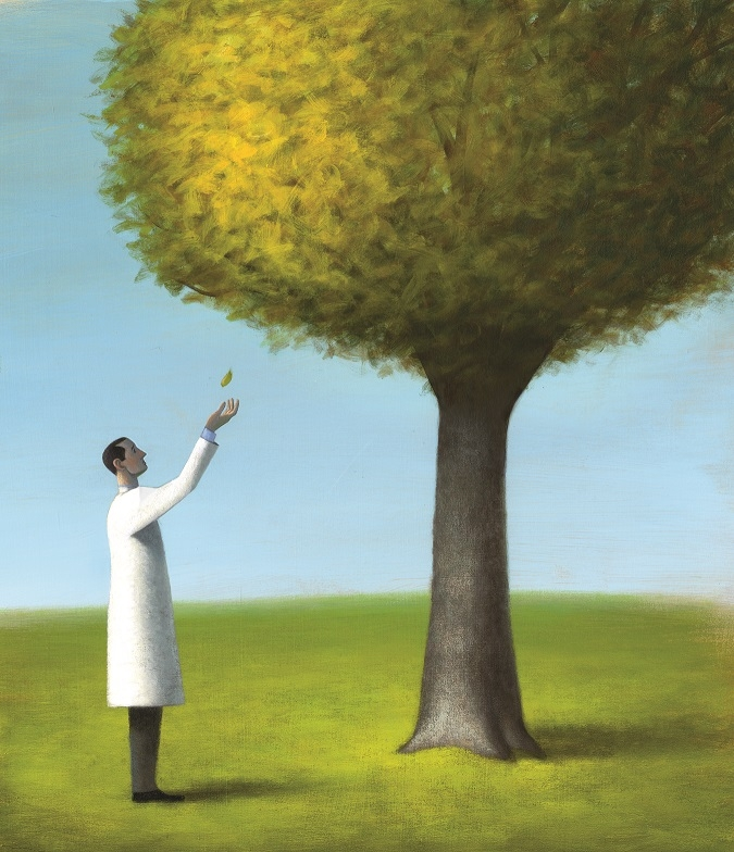 Illustration of a doctor catching a leaf falling from a tree.