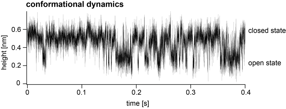graph showing speed of microscopy recordings