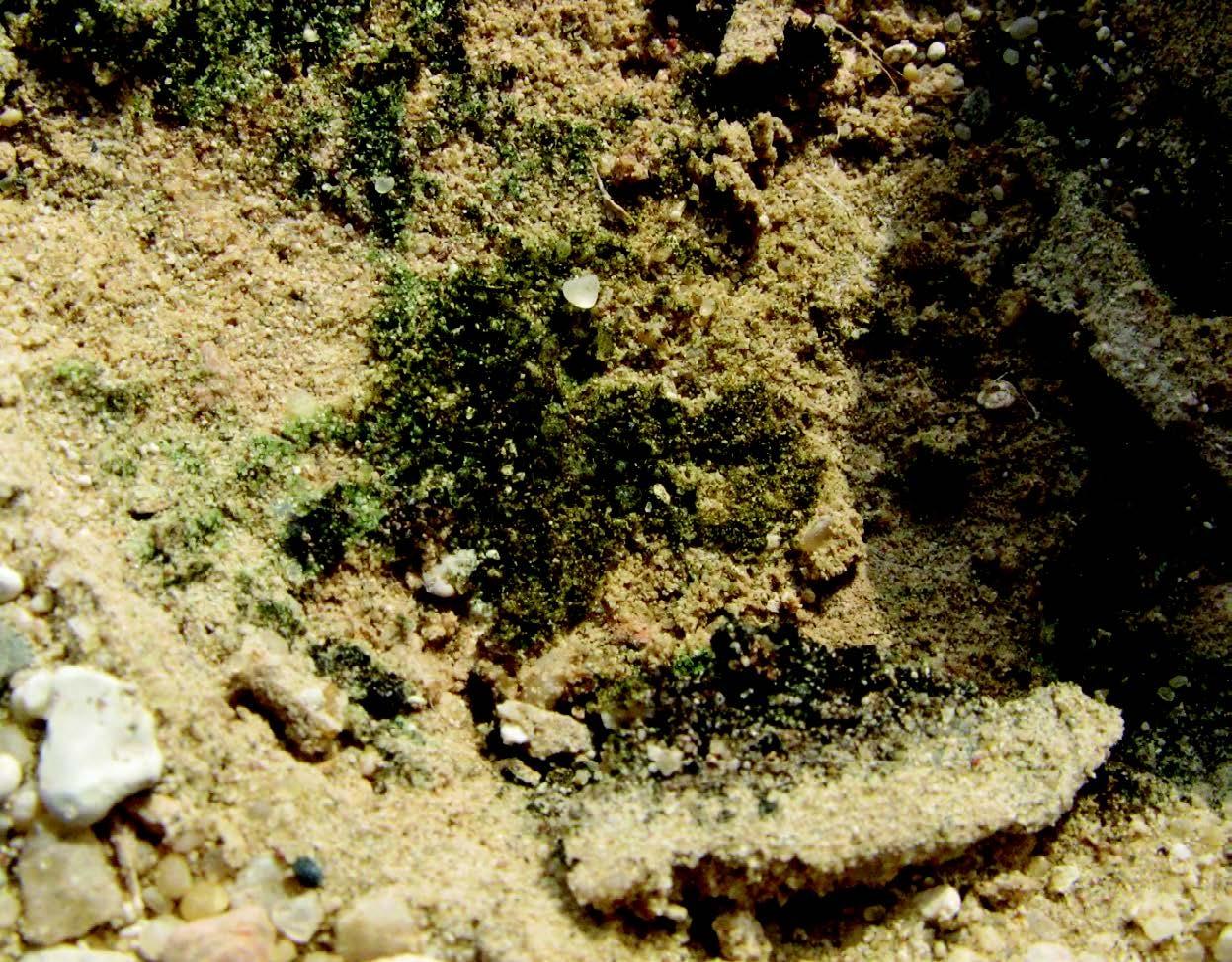 sand stone